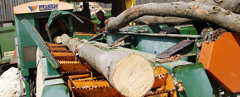Logs & firewood